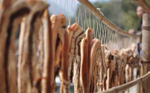 如何腌制腊肉 腌制腊肉的方法步骤教程